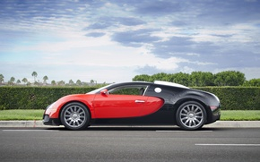 Picture Bugatti, Grand, Veyron, red, black, Sport