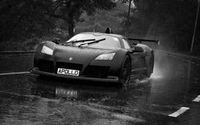 Picture rain, black, sport, light, Gumpert, black, road, rain, tree, Apollo, Gumpert, Apollo