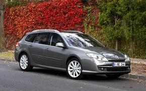 Picture Renault, autumn, gray, Laguna