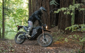Picture Forest, Motorcycle, Ryder, The bike is, Zero FX Stealth Fighter