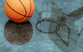 Picture water, drops, reflection, rain, the ball, ring, shield, basketball