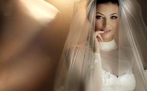 Picture Girl, Brunette, Model, Look, Makeup, Veil, Bride, Wedding Dress, Backgrounds