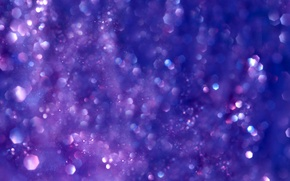 Wallpaper purple, macro, Shine, purple