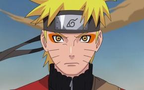 Picture Naruto, Anime