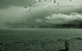 Picture birds, loneliness, Desert