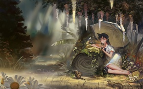Picture forest, flowers, umbrella, anime, art, girl