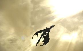 Picture Fantasy, Dragon, Skyrim
