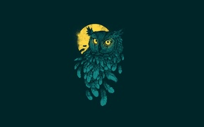 Picture minimalism, the dark background, feathers, owl, moon, yellow moon, owl, bird