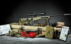 Picture sniper rifle, Stiller Tac 30 AW build, Spartan Precision Rifles