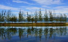 Picture #nature, #Laguna, #Vietnam
