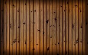 Wallpaper nails, bitches, Board