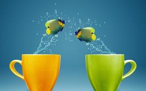 Picture water, fish, splash, mugs