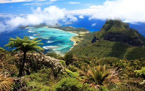 Picture clouds, mountains, palm trees, the ocean, coast, island, Australia, panorama, Lord Howe Island
