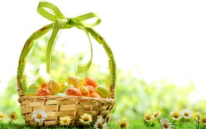 Picture grass, flowers, basket, chamomile, eggs, spring, colorful, Easter, flowers, spring, painted, eggs, easter, daisy