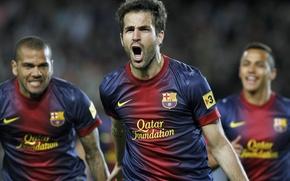 Picture Sport, Football, Nike, Barcelona, Fabregas, Fabregas, Football, Dani Alves, Spain, FCB, Barca, Cesc, Cesc Fabregas, …