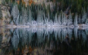 Picture frost, forest, lake, reflection, spruce, slope