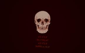 Picture skull, dark, the inscription, skeleton, minimalism