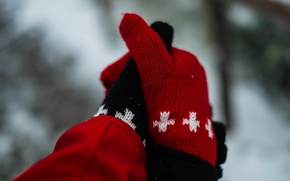 Picture pattern, black, gloves, red