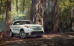 Picture Ford, Forest, Ford, SUV, Sport, Explorer