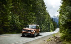 Picture road, forest, movement, speed, track, Land Rover, Discovery, 2015, Landmark
