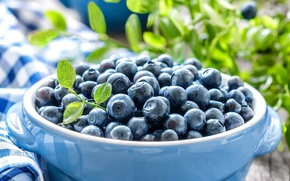 Picture leaves, berries, blueberries, dishes, blueberries