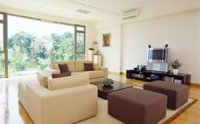 Wallpaper room, sofa, vase, interior, flowers, apartment, window, plants, trees, pillow, TV, leaves, chair