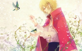 Picture flowers, birds, plants, guy, howl, Howl's moving castle, Howl's Moving Castle, Howl