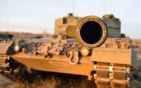 Picture the barrel, tank, combat, Leopard-C2