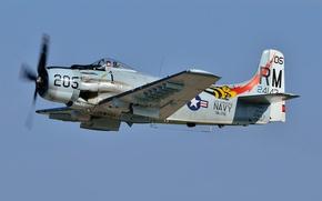 "Wallpaper Skyraider, attack, A-1, ""Skyraider"""