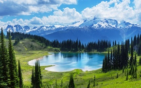 Picture forest, lake, Canada, landscape, lake, Banff National park, Moraine