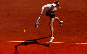 Wallpaper the ball, racket, Maria Sharapova, tennis, court