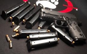 Picture Gun, Cartridges, Sig Sauer, Clips