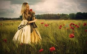 Picture field, girl, flowers, mood, rose, Maki, dress