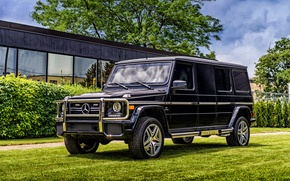 Picture W463, g, Mercedes-Benz, Mercedes, Inkas, G-Class, AMG