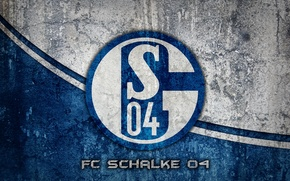 Picture Germany, wallpapers, football, FC Schalke 04