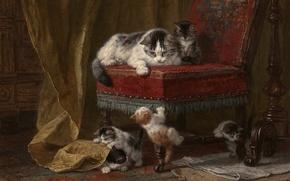 Wallpaper cat, picture, paint, cat, painting, kittens, art, chair, play, kids, kitten, five, chair