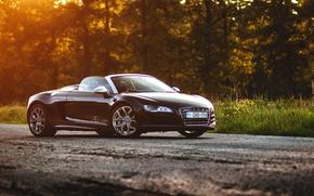 Picture Audi, black, Spyder, front, sun, V10