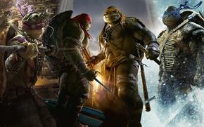 Picture Teenage mutant ninja turtles, The film, Mutants, Raphael, Leonardo, Donatello, Donatello, Leonardo, Michelangelo, Teenage Mutant …