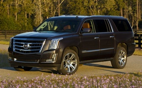 Picture Cadillac, Escalade, '2014