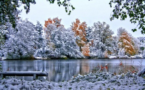Picture snow, nature, winter, trees, foliage, the sky, grass, river