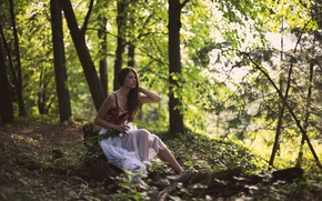 Picture forest, girl, trees, bouquet, brown hair