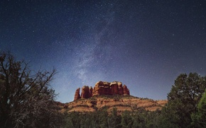 Picture space, stars, trees, The Milky Way, outliers