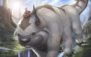 Picture Avatar: The Last Airbender, Avatar: The Legend of Aang, aang, appa