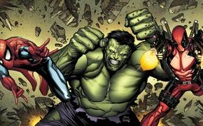 Picture weapons, anger, ninja, Hulk, swords, comics, spider-man