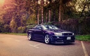 Picture Nissan, GT-R, Skyline, R34, Nismo, S-Tune
