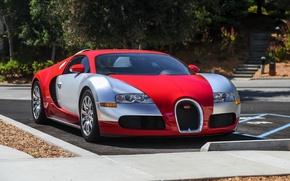 Picture veyron, silver, red, bugatti