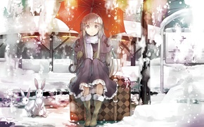 Picture girl, snow, umbrella, rabbit, dress, sitting, brown eyes, kasugano sora, yosuga no sora, silver hair
