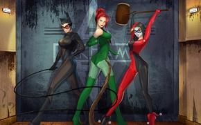 Picture batman, dc comics, catwoman, poison ivy, harley quinn, Gotham City Sirens
