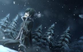 Wallpaper kirito, snow, sao, kirito, sword art online, sword art online, tears, forest, yuuki tatsuya