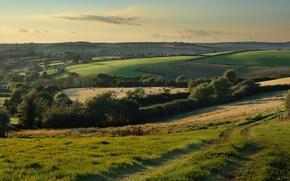 Wallpaper road, field, nature